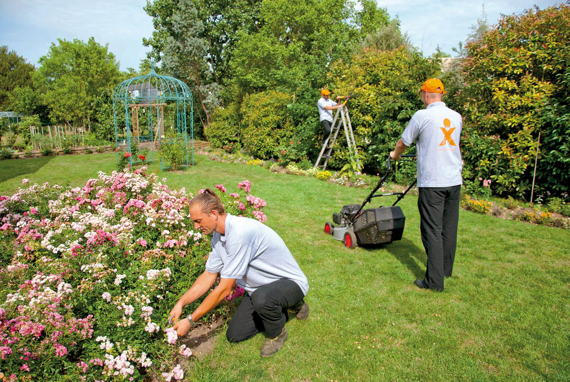 visuel-jardinier-5